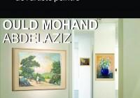 Exposition de l'artiste peintre Abdelaziz Ould Mohand
